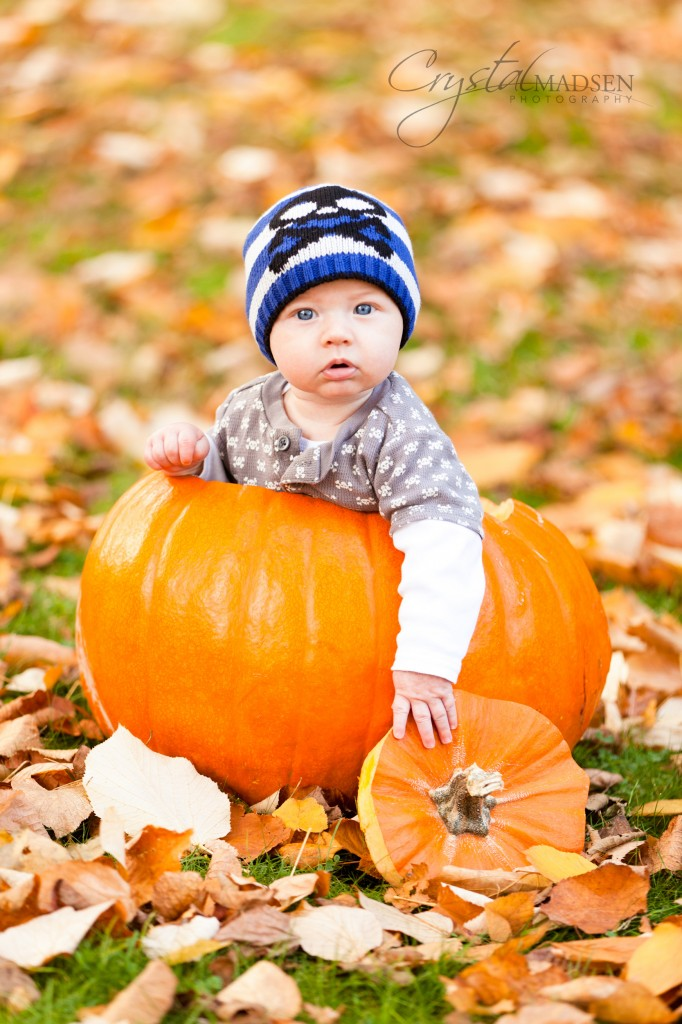 Finch Arboretum Fall Photo