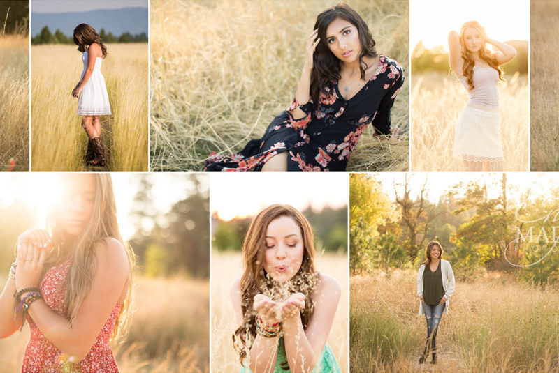 Golden fields in Spokane for Photography