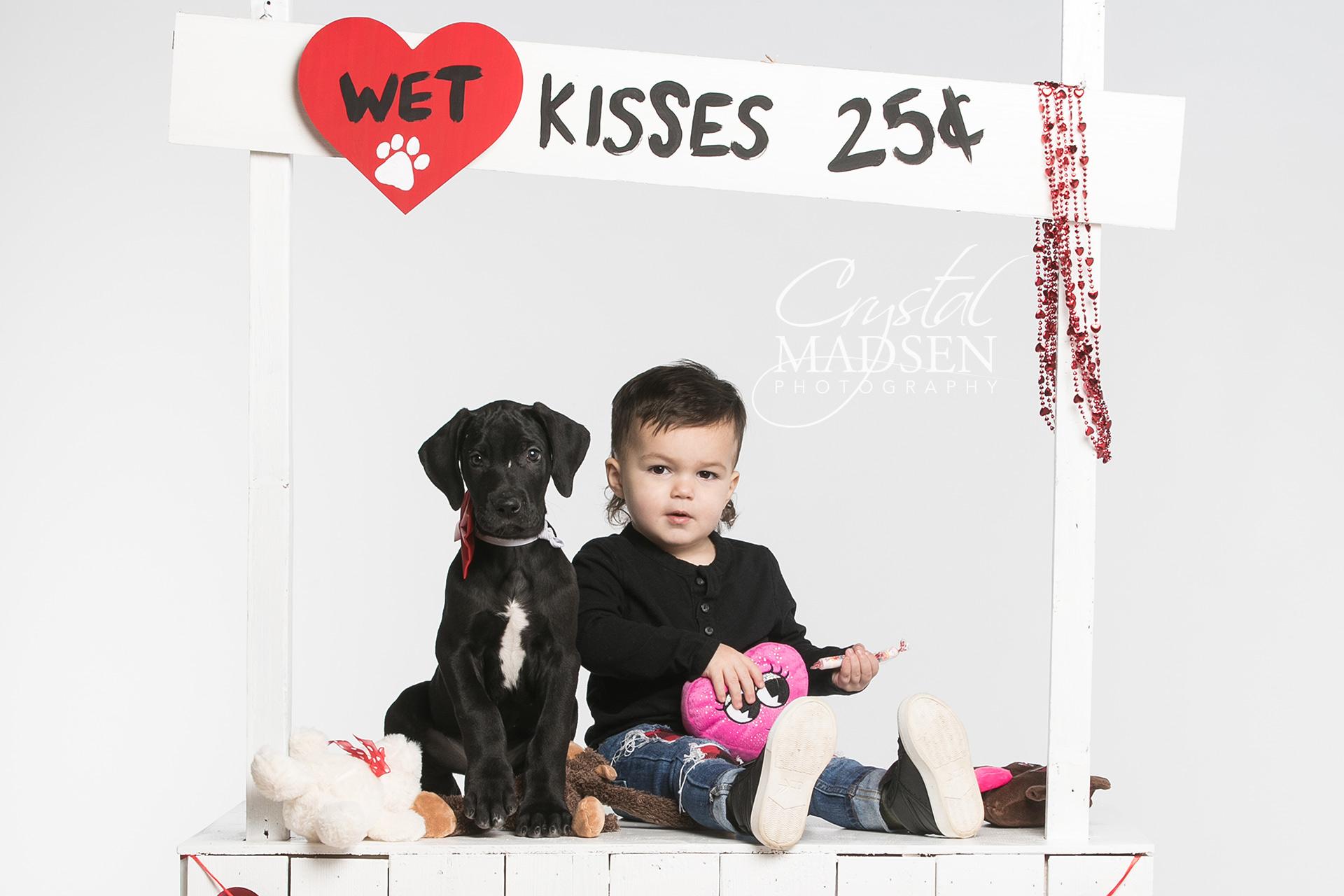 Valentine's Day Dog Photo Shoot